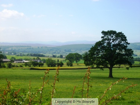 Eden Valley from the Long Meg signpost